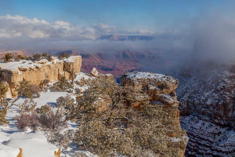 Grand Canyon -Zuiden Rim Snow stock afbeelding