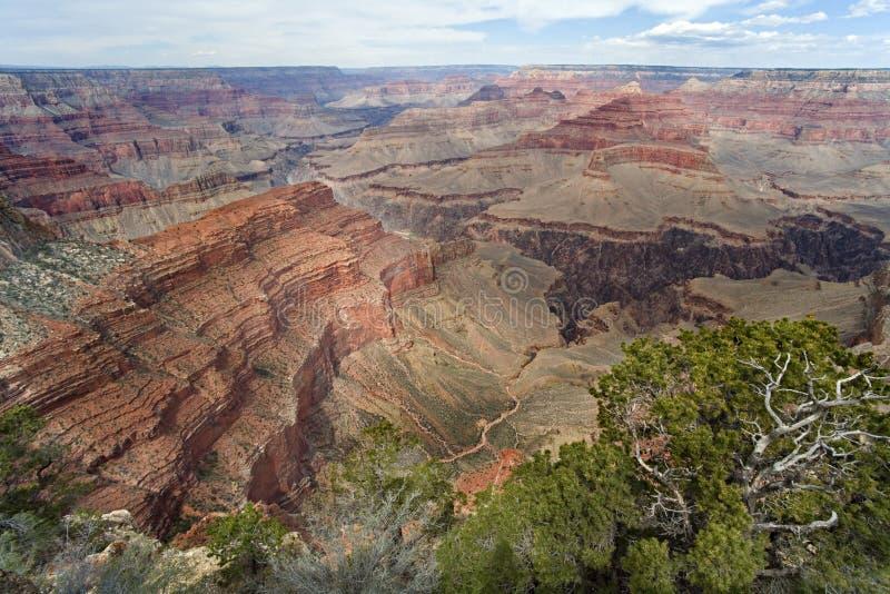 Grand- Canyonsüdfelge stockbild
