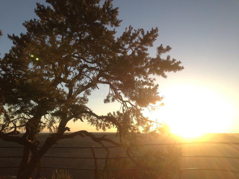 Grand- Canyonsonnenuntergang lizenzfreies stockbild