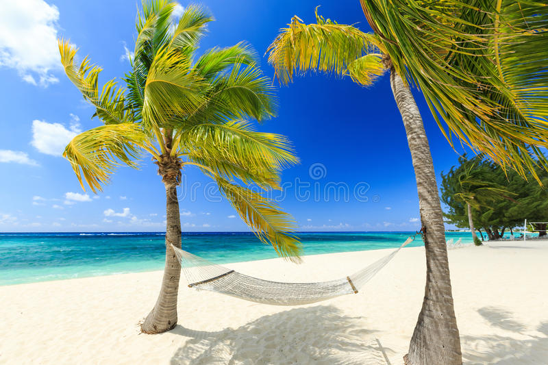 Grand Cayman, Cayman Islands. Hammock and palm trees at 7 mile beach, Grand Cayman royalty free stock image
