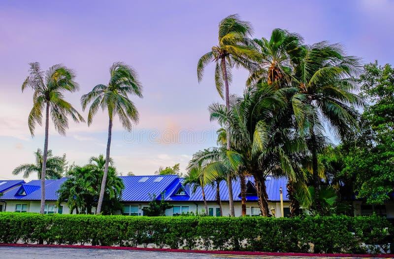 Grand Cayman, Meerblick-Wohnungen lizenzfreies stockbild