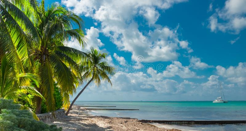 Grand Cayman-Rum Point royalty free stock photography