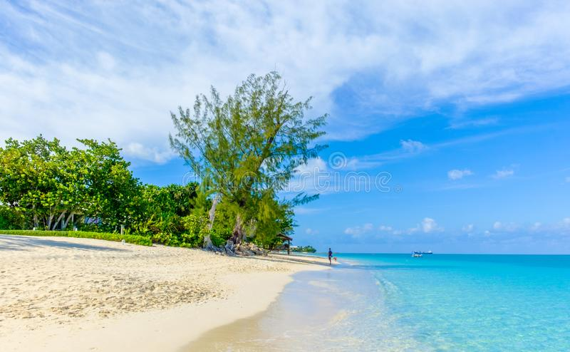 Grand Cayman-Seven Mile Beach royalty free stock image