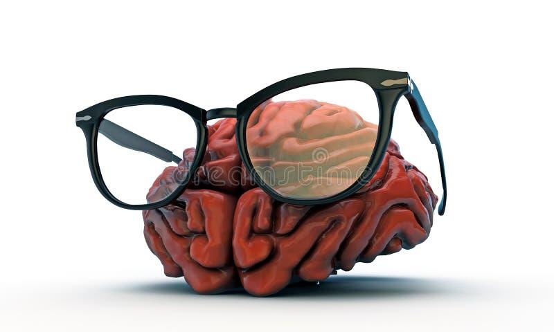 Grand cerveau avec les verres noirs illustration libre de droits