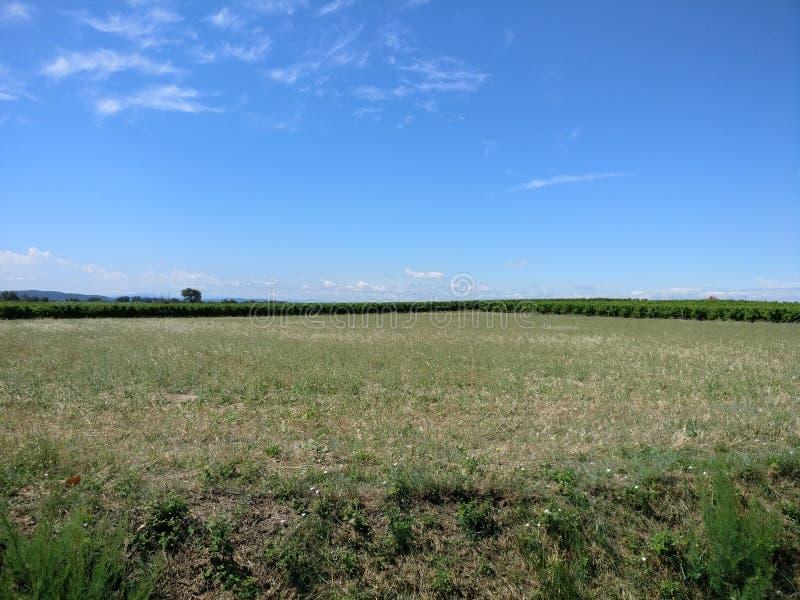 Grand champ vide dans les sud des Frances images stock