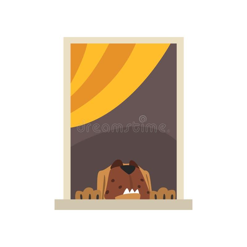 Grand chien brun regardant par la fenêtre Caractère d'animal domestique de bande dessinée Élément extérieur de détail Vue de la r illustration stock