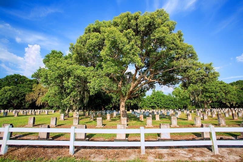 Grand cimetière, cimetière avec les pierres tombales multiples photo stock