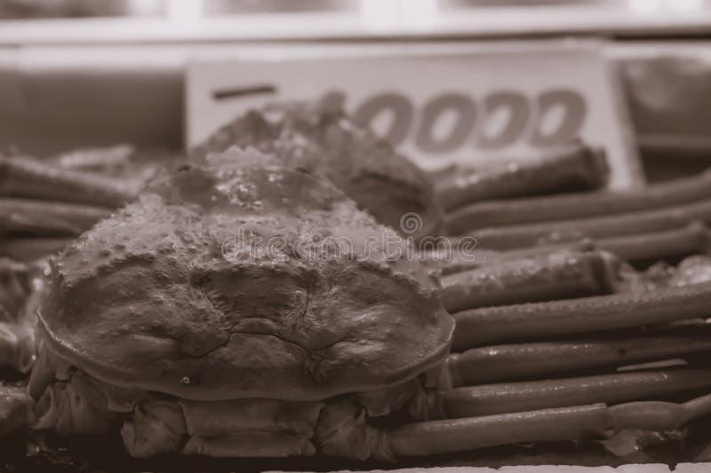 Grand crabe étant vendu à la poissonnerie de Tsukiji à Tokyo Japon photographie stock libre de droits