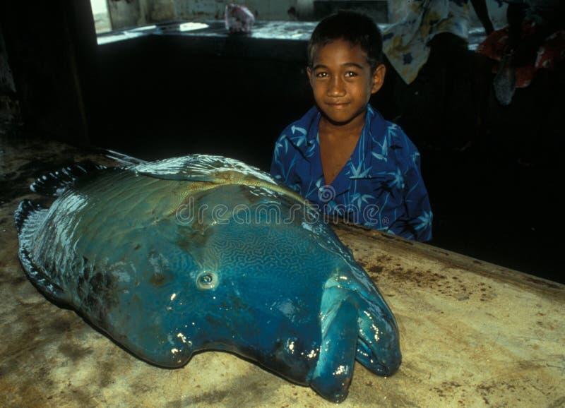 Grand crochet, grand poisson : Le fleuve Amazone fournit les gens du pays la nourriture fraîche images stock