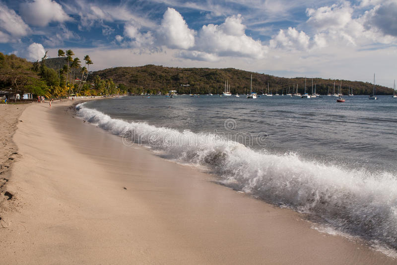 Grand d'Arlet d'Anse, la Martinique image stock