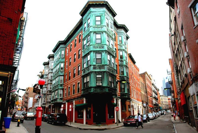Grand dos à vieux Boston images libres de droits