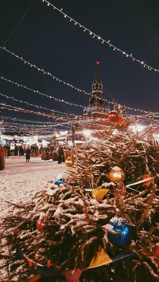 Grand dos rouge Moscou image libre de droits