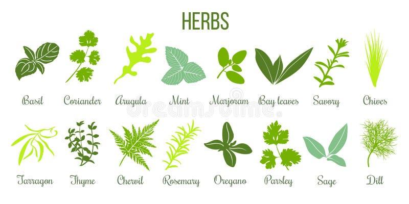 Grand ensemble d'icône d'herbes culinaires plates sauge, thym, romarin, basilic illustration libre de droits