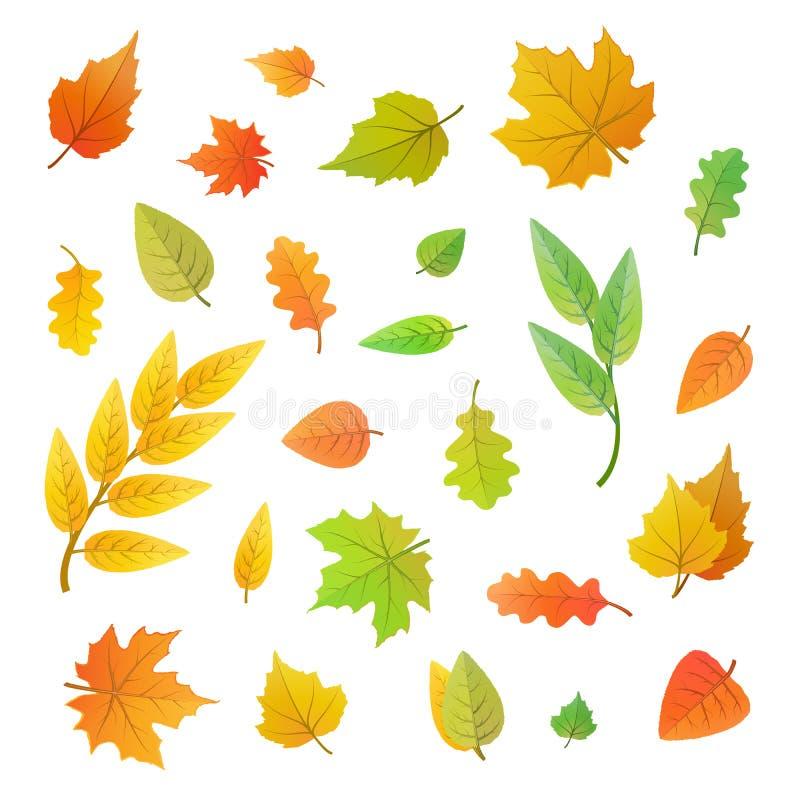 Grand ensemble de feuilles mignonnes de différents arbres sur le blanc illustration libre de droits