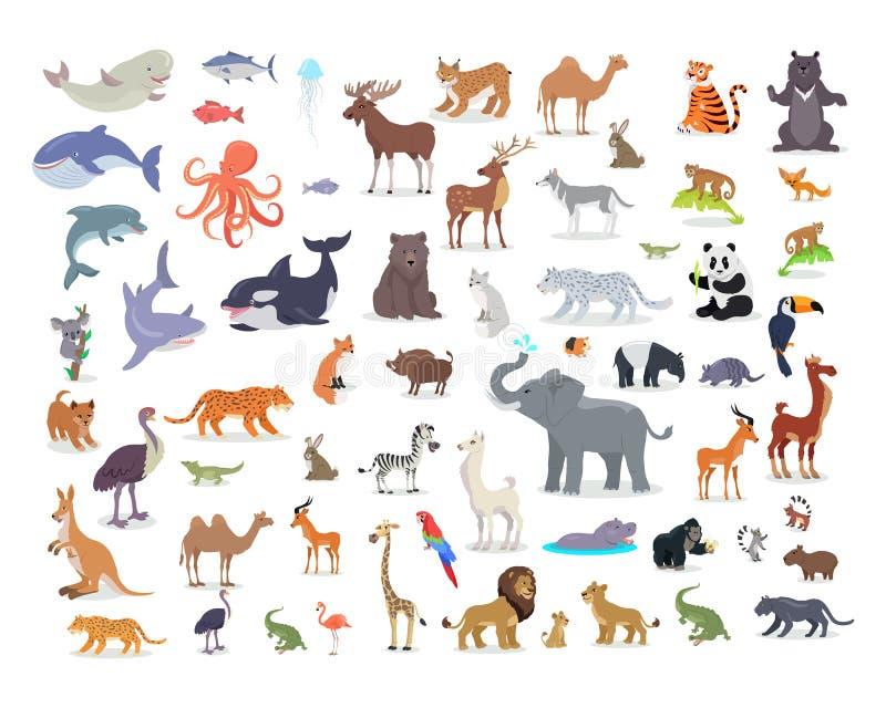 Grand ensemble de vecteurs de bande dessinée d'espèces animales du monde illustration stock