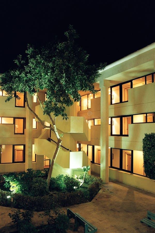 Download Grand ficus image stock. Image du gentil, lumières, hôtel - 80719