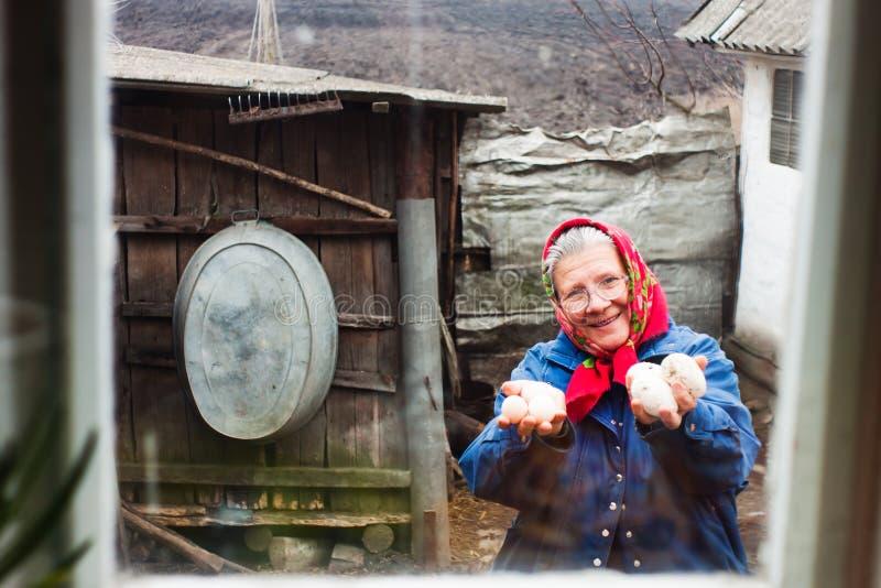 Grand-mère avec des oeufs de poulet photographie stock
