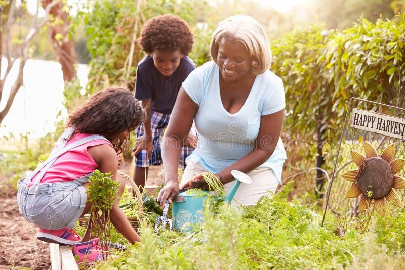 Grand-mère et petits-enfants travaillant à l'attribution photographie stock libre de droits