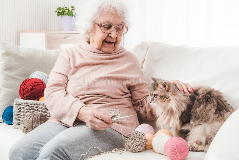 Grand-mère frottant le chat image stock