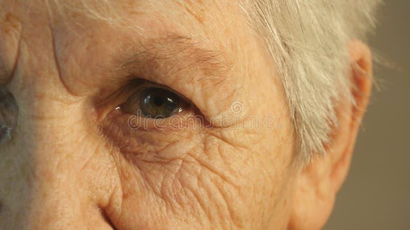 Grand-mère regardant l'appareil-photo Plan rapproché photos stock