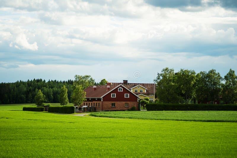 Grand manoir finlandais aux milieux à une ferme de blé photographie stock