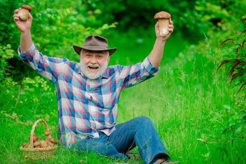 Grand-père avec le panier des champignons et d'une expression du visage étonnée Grand-père heureux - été et passe-temps Vieil hom photographie stock