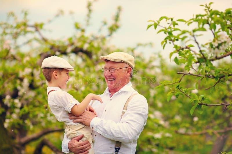 Grand-père avec le petit-fils ayant le jardin d'amusement au printemps photo libre de droits