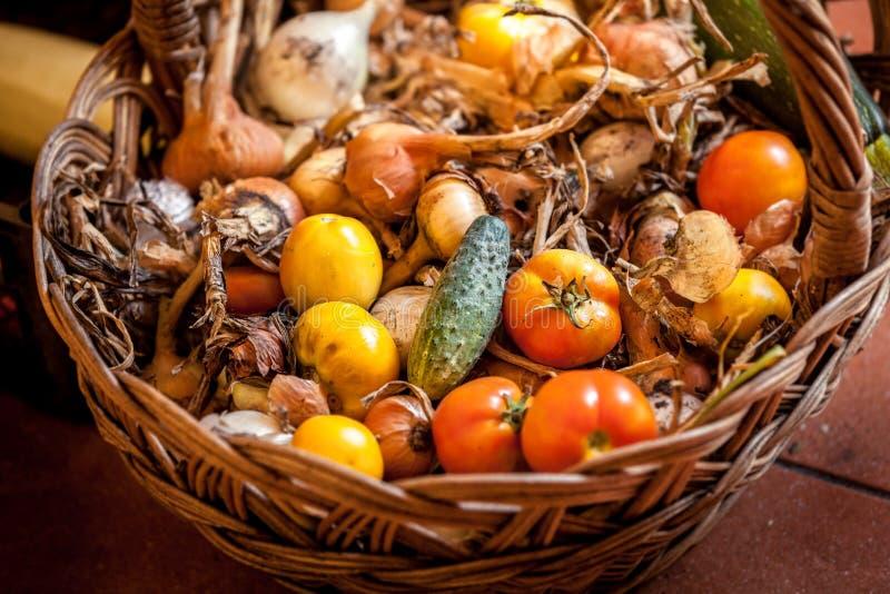 Grand panier complètement des tomates, des oignons et des concombres images libres de droits