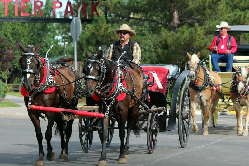 Grand Parade, Cheyenne Frontier Days royalty free stock images