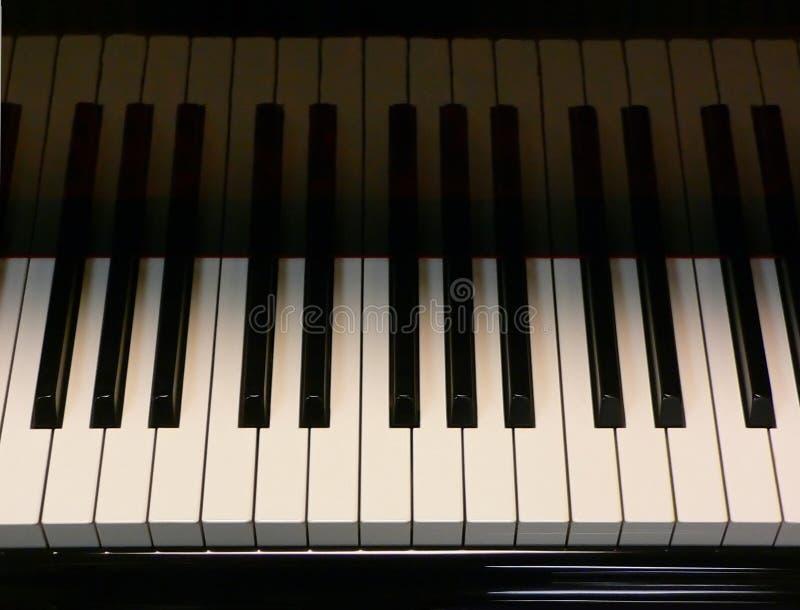 Grand Piano Keys Stock Photography