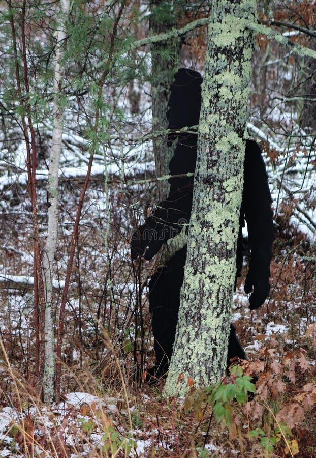 Grand pied marchant par une forêt photographie stock libre de droits