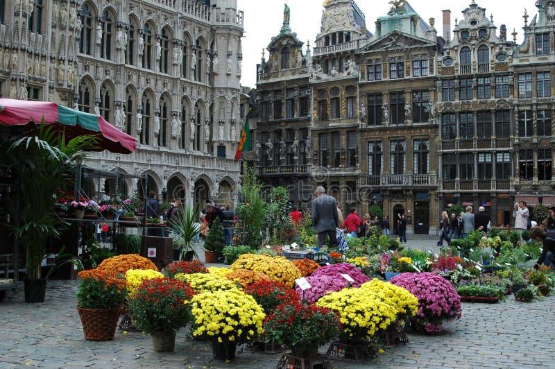 Grand Place a Bruxelles, Belgio fotografia stock libera da diritti