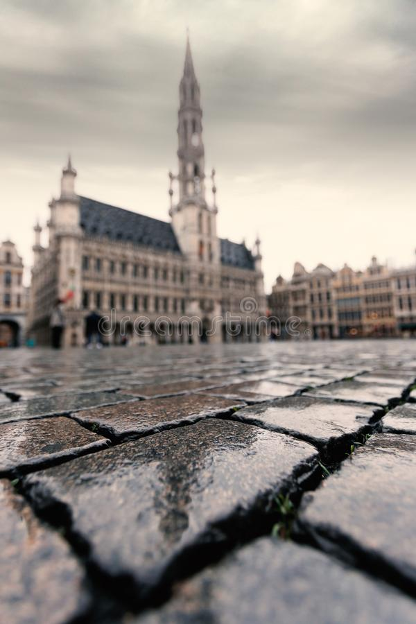 Autumn Brussels, Grand Place, Belgium royalty free stock photo