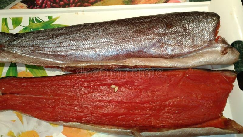 Grand poissons/poisson de mer rouge sec/saumons séchés au soleil/ photos libres de droits