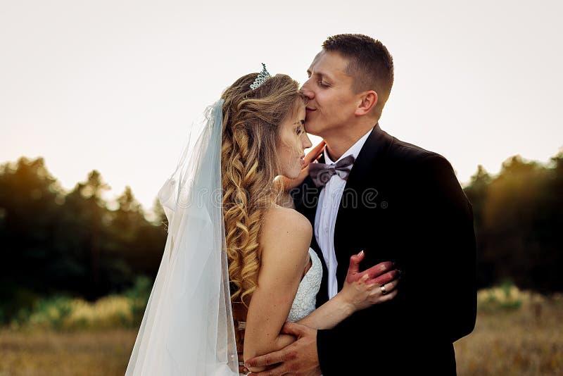 Grand portrait d'un couple l'épousant, qui marche dans le domaine images stock