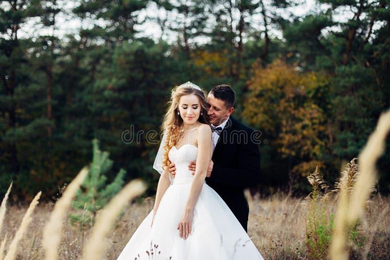 Grand portrait d'un couple l'épousant, qui marche dans le domaine photos libres de droits