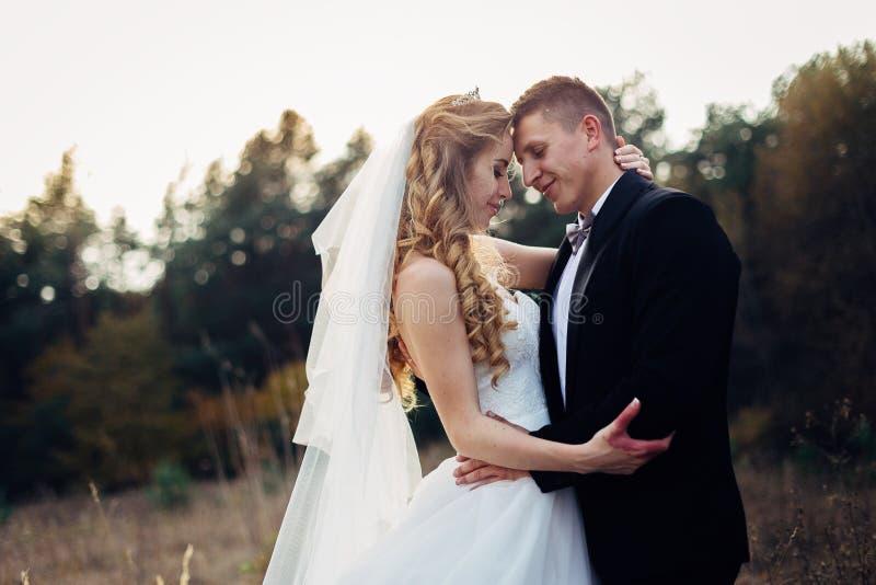 Grand portrait d'un couple l'épousant, qui marche dans le domaine image libre de droits