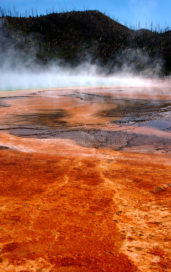 Download Grand Prismatic Hot Spring Mud Flats Stock Photo - Image: 243178