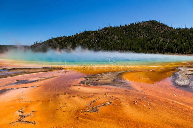 Grand Prismatic Spring in Yellowstone National Park, USA. The Grand Prismatic Spring in Yellowstone National Park is the largest hot spring in the United royalty free stock photo