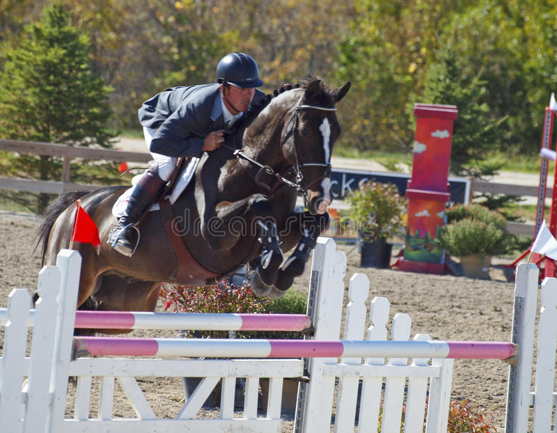 Grand Prix Jumping stock images