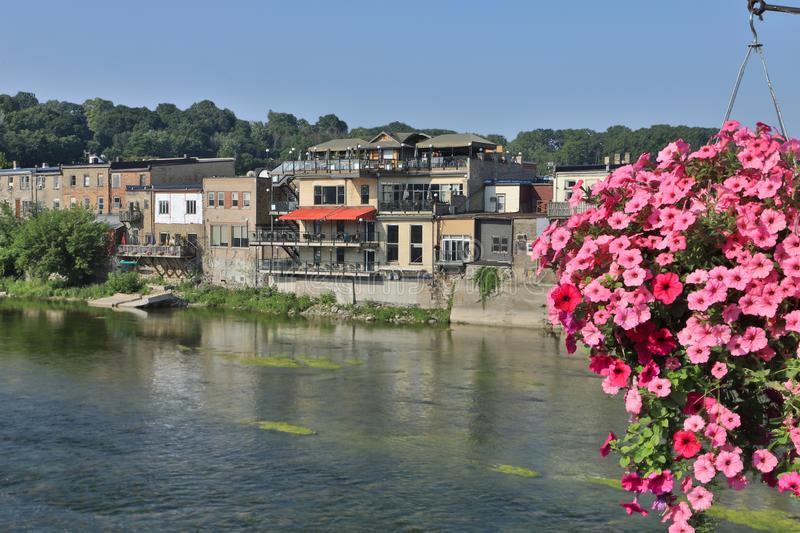 Grand River at Paris, Canada with flowers in foreground. The Grand River at Paris, Canada with flowers in foreground royalty free stock image