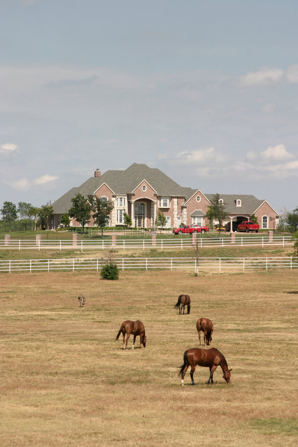 Free Grand Rural Estate With Horses 2 Stock Images - 954644