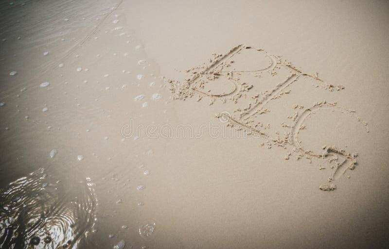 GRAND sur le sable sur la plage photos stock