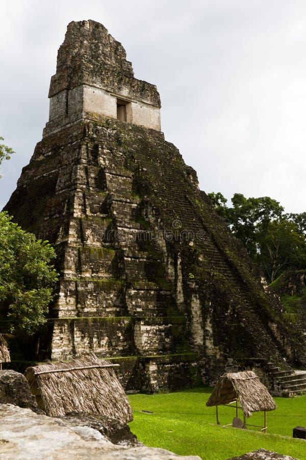Grand temple de Jaguar, Tikal, Guatemala photo libre de droits
