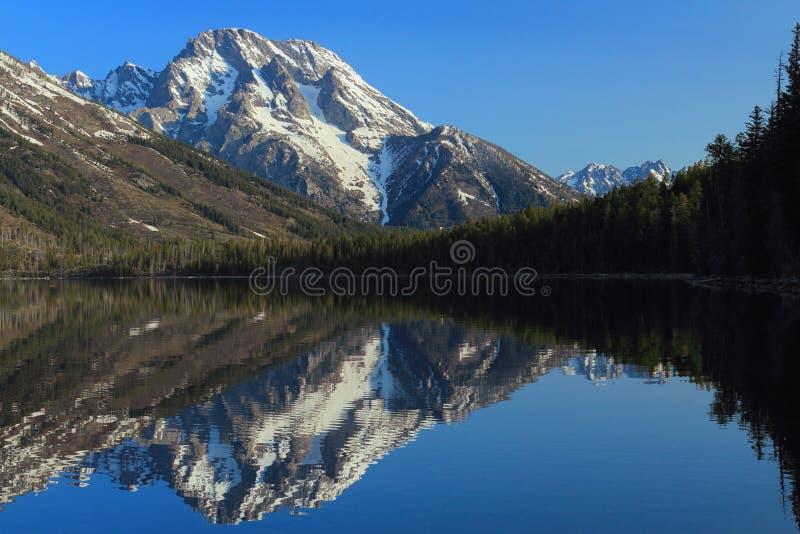 Grand Teton National Park, Wyoming, USA, Mount Moran reflekterade i Jenny Lake tidigt på vårmorgonen i Rocky Mountains royaltyfri bild