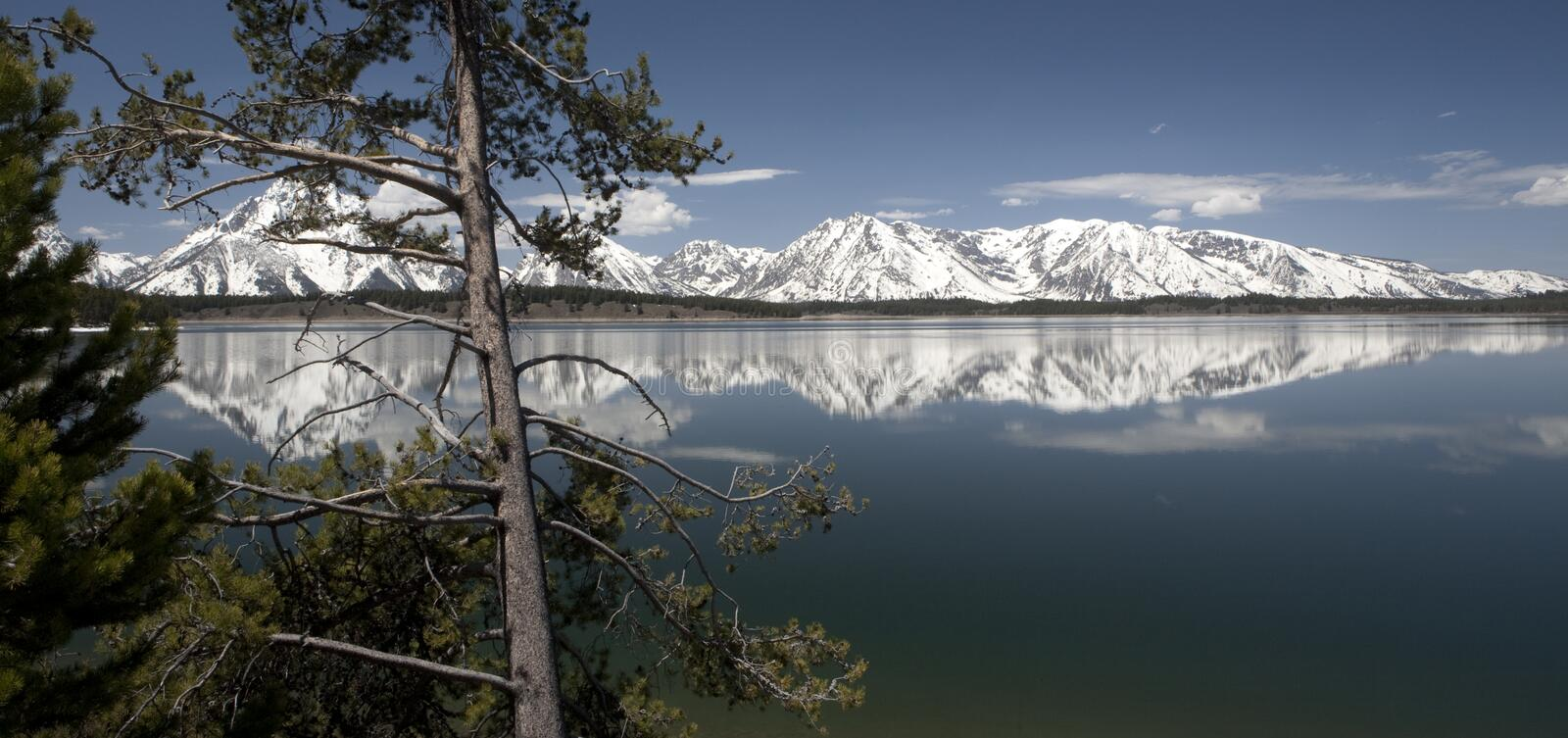 Download Grand Teton stock image. Image of colors, travel, national - 33676755