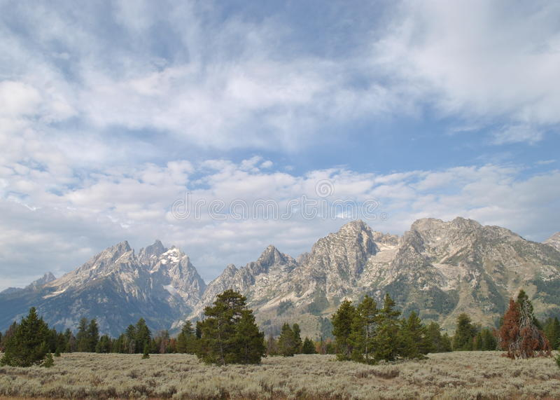 Download Grand Tetons stock image. Image of hole, forest, northwestern - 10853209