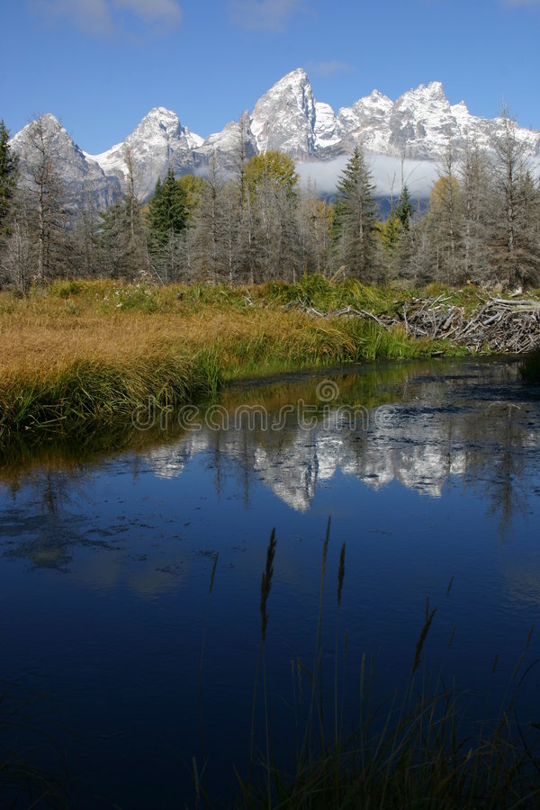 Grand Tetons stock images