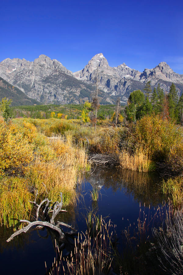 Grand Tetons national park stock images