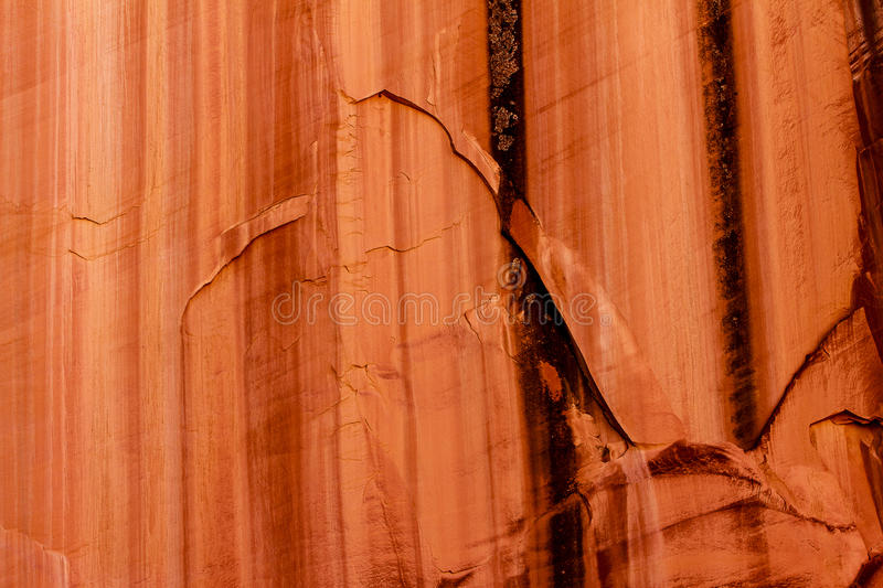 Grand Wash Canyon Wall. This detail image of a canyon wall was captured in the Grand Wash Canyon at Capitol Reef National Park in Utah royalty free stock photo